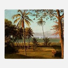Florida Scene, painting by Albert Bi Throw Blanket