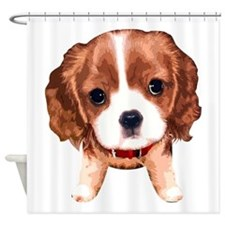 CavalierKingCharlesSpaniel003 Shower Curtain