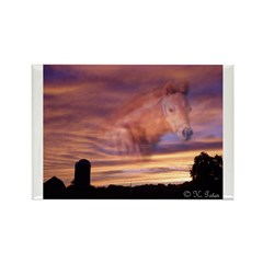 Horse In the Sky Rectangle Magnet (100 pack)