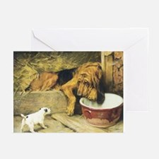 Bloodhound Greeting Cards (Pk of 10)