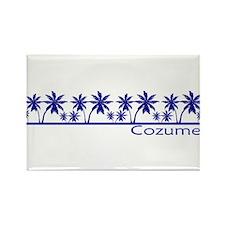 Funny Dive cozumel Rectangle Magnet (10 pack)