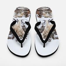 Howling Wolf Flip Flops