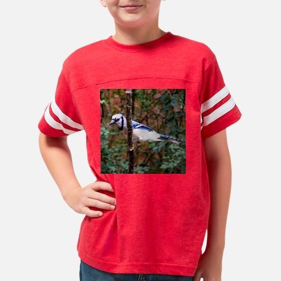 Blue Jay Behind Branch Youth Football Shirt