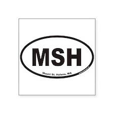 Mount St. Helens MSH Euro Oval Sticker