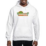 Delray Beach, Florida Hooded Sweatshirt