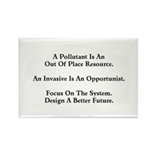 Focus on the System Magnets