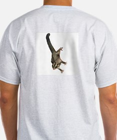 Sugar Daddy~Glider Pride Ash Grey T-Shirt