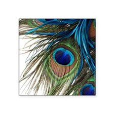 "Peacock Feathers Square Sticker 3"" x 3"""