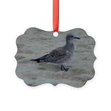 Shore Bird Ornament
