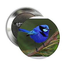 Blue Wren Button