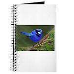 Blue Wren Journal