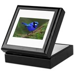 Blue Wren Keepsake Box