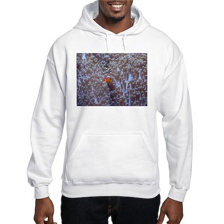 Clownfish & Anemone Hooded Sweatshirt