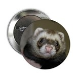 Zac #2 Button