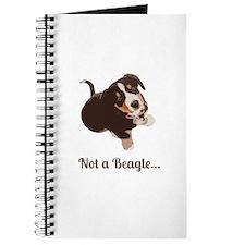 Not a Beagle - Entlebucher Mtn Dog Journal