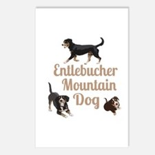 Entlebucher Mountain Dog Postcards (Package of 8)