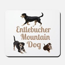 Entlebucher Mountain Dog Mousepad