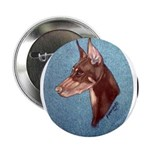 Red Doberman Pinscher 2.25