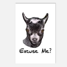 Pygmy Goat Excuse me? Postcards (Package of 8)