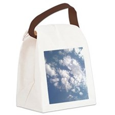 IFFM Big  Texas Skye Canvas Lunch Bag