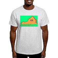 Hurricane and Earthquake 2011 T-Shirt