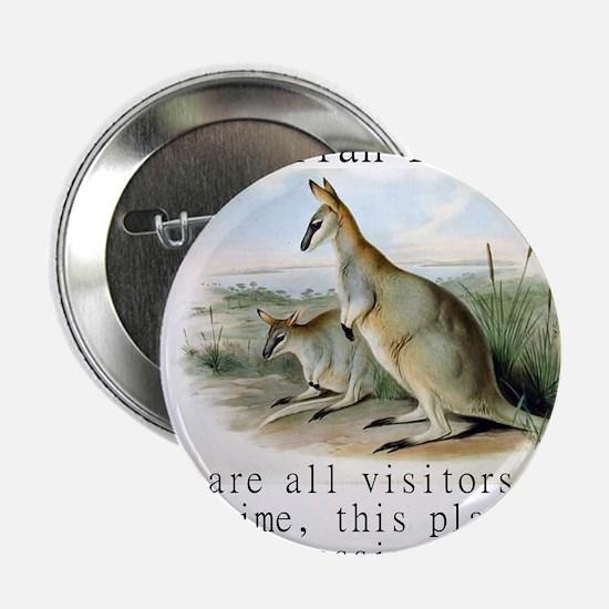 "We Are All Visitors - Australian 2.25"" Button"