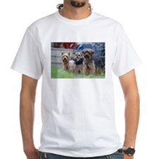 Morkie, Chorkie and Yorkie T-Shirt