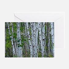 Aspen grove Greeting Card