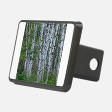 Aspen grove Hitch Cover