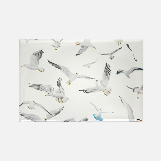 Birds Magnets