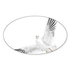 Bird, Dove, Peace Decal