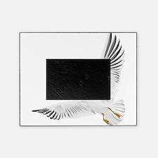 Bird, Dove, Peace Picture Frame