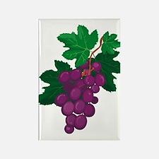 Purple Grapes Rectangle Magnet