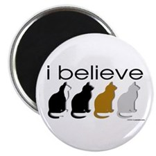 I believe in cats Magnet