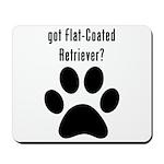 got Flat-Coated Retriever? Mousepad