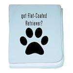got Flat-Coated Retriever? baby blanket