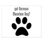 got Bernese Mountain Dog? Posters