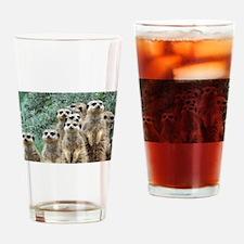 Unique Meerkat Drinking Glass