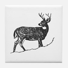 White Tailed Deer Trophy Buck Tile Coaster