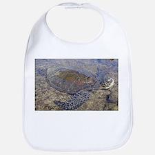 Honu - Sea Turtle Bib