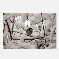 Chickadee Haven Postcards (Pk of 8)