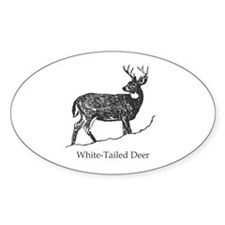 White Tailed Deer Trophy Buck Decal