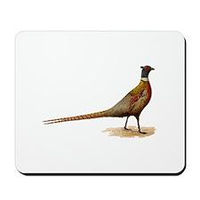 Ring-necked Pheasant Mousepad