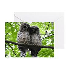 Cuddling Owls Greeting Card