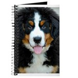Berner Journals & Spiral Notebooks