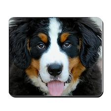 Berner Puppy Mousepad