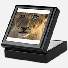 Sparta Lion Cub Keepsake Box