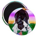 Bowing Boston Terrier Magnet