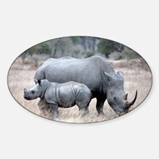 Mother and Baby Rhino Decal