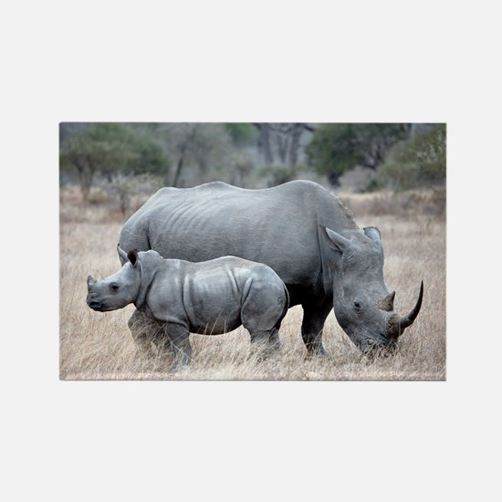 Mother and Baby Rhino Magnets